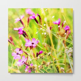 Flowers in the sun Metal Print
