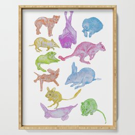 Australian Animals Partying! Serving Tray