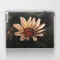 Presence Laptop & iPad Skin
