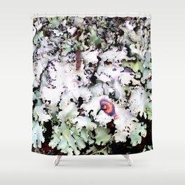 Hawaiian Lichen Shower Curtain