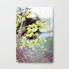 Spring Rebirth Metal Print