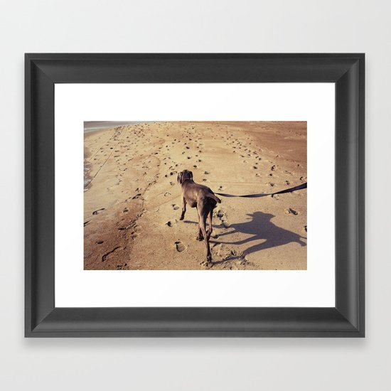 beachdog Framed Art Print
