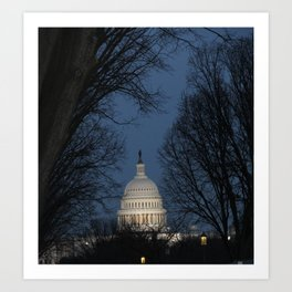 capitol through the trees Art Print