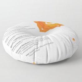 Sacral - Svadhishthana Chakra Art & Info Floor Pillow