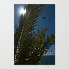 Sunny palms Canvas Print