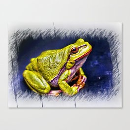 The InFocus Happy Frog Collection IX Canvas Print