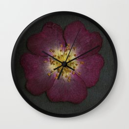 Pressed Wild Rose Wall Clock