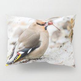 Bohemian waxwing Pillow Sham