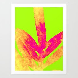 Green and Ultra Bright Coral Fern Art Print