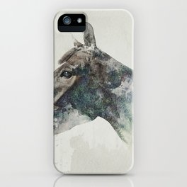 Forrest of louie iPhone Case