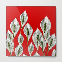 Calla Lilies on Red Metal Print