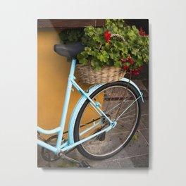 Bicycle Geraniums Metal Print