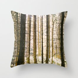 Sunlight Through Trees In Forest Woods Throw Pillow