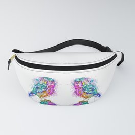 Colorful Owl Fanny Pack