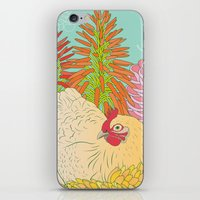 chicken iPhone & iPod Skins featuring Chicken by Raewyn Haughton