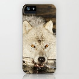 Weapon for a cold war iPhone Case