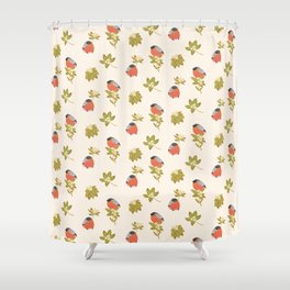 Eurasian bullfinch Shower Curtain