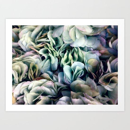 Soft Subtle Petal Ruffles Abstract  Art Print