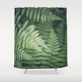 Where the Redwood Fern Grows Shower Curtain