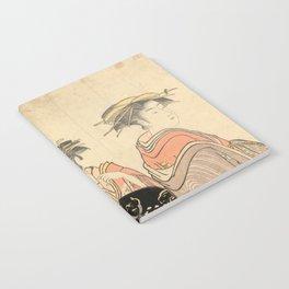 The Courtesans Maizumi Of The Daimonjiya Brothel Notebook