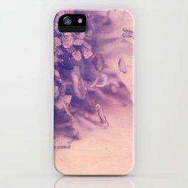 Romantica in Pastel iPhone Case