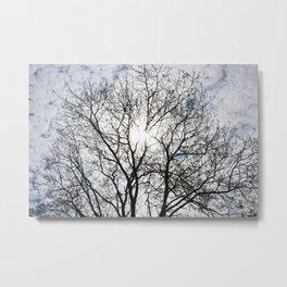 A tree in Fall Metal Print