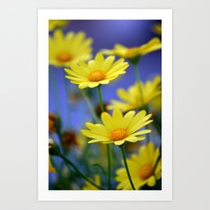 Yellow Daisies Blues Art Print