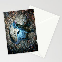 Lazy Lace Monitor Stationery Cards