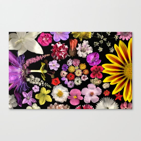 Dueling Families Canvas Print