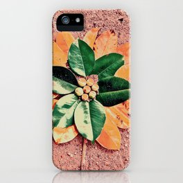 Peach and Flower iPhone Case