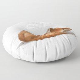 Let Sleeping Foxes Lie Floor Pillow