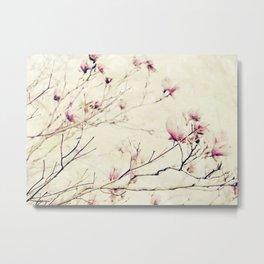 Spring Botanical - Tulip Tree, Magnolia × soulangeana II Metal Print
