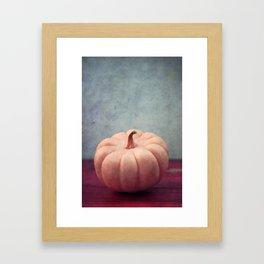 citrouille II Framed Art Print