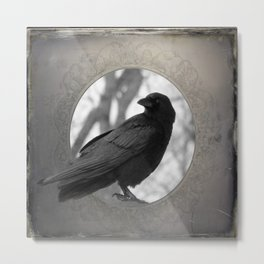 Portrait Of A Crow Metal Print