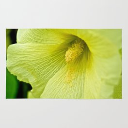 Soft Yellow Flower - The Peace Collection Rug