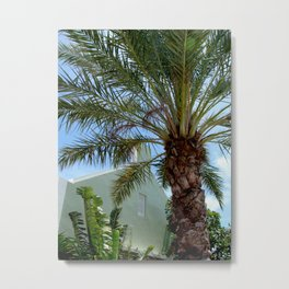 Grand Turk Palm and Building Metal Print