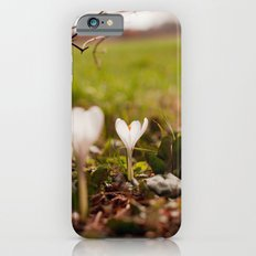 on the ground Slim Case iPhone 6s
