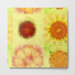 Hyperaeolism Content Flowers  ID:16165-130047-55630 Metal Print