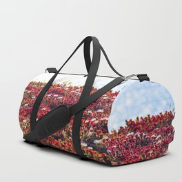 closeup red flower with blue ocean background in summer Duffle Bag