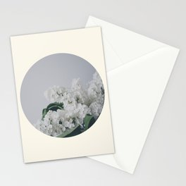 Comforting White Flowers Stationery Cards