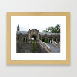 Palaces Framed Art Print