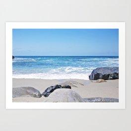 Shell Beach  Art Print