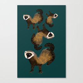 Brave Polecat ( Mustela putorius ) Canvas Print