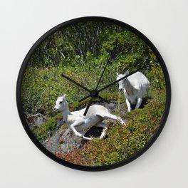 Ewe & Lamb Dall Sheep - II Wall Clock