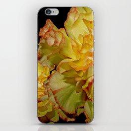 Carnation, Dianthus Fantasy 13 iPhone Skin