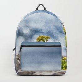 Calanques Backpack