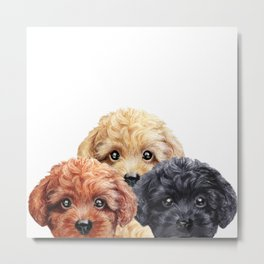 Toy poodle trio, Dog illustration original painting print Metal Print
