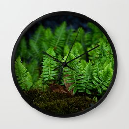 Bridge Ferns Wall Clock