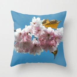 Cheery Blossom Up Close Throw Pillow