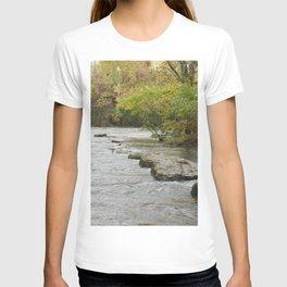 Nature or Limitation T-shirt